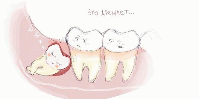 смешная картинка зубного врача