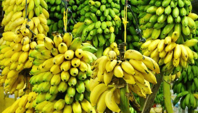 продукты влияющие на холестерин в крови