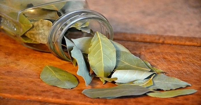 30-burn-bay-leaves-fb-918x482-696x365