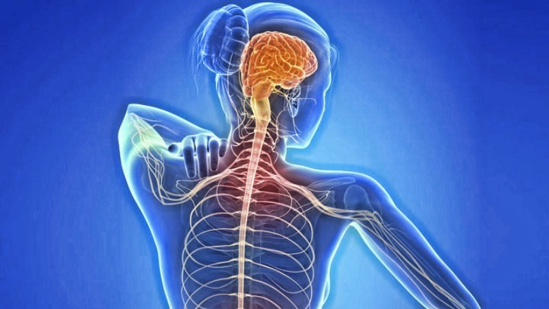 Против рассеянного склероза
