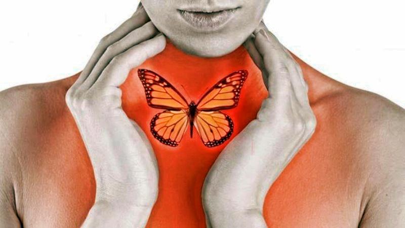 Щитовидная железа может быть исцелена с помощью клюквенного сока