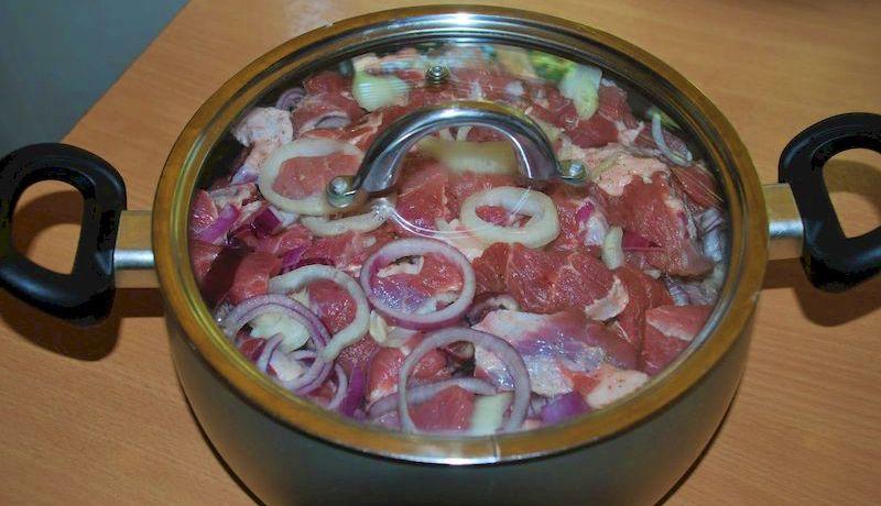 Самые изысканные маринады для шашлыка: 10 вкусных рецептов мяса для пикника