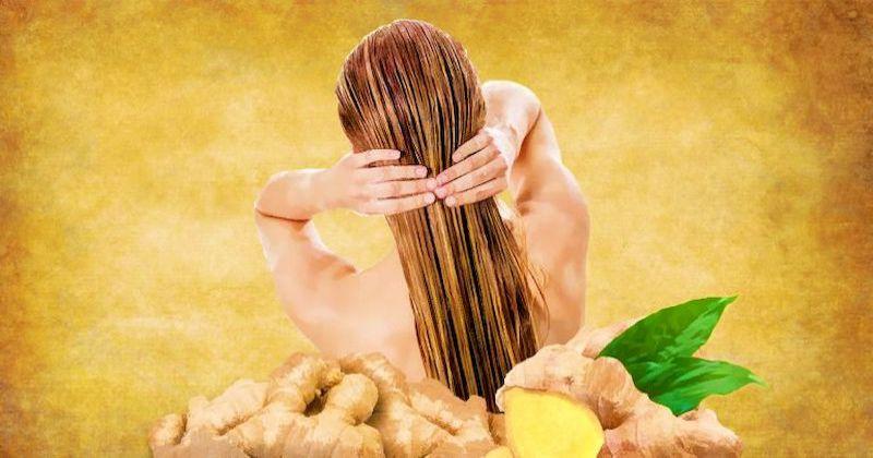 Польза имбиря для волос: как приготовить мощные имбирные маски, чтобы раскрыть красоту волос на полную