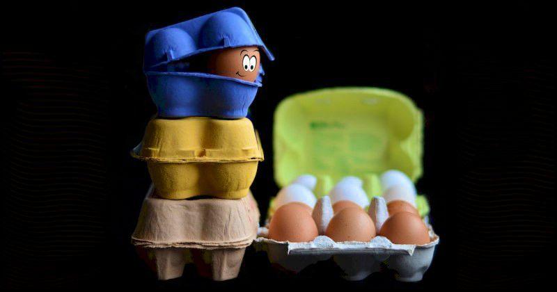 10 фактов, чтобы выбрать правильные яйца и получить от них максимум пользы