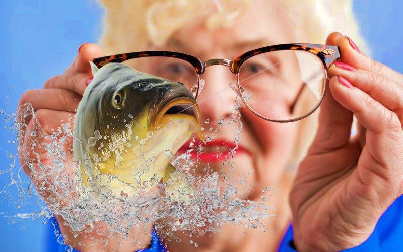 5 доступных продуктов, чтобы улучшить зрение и укрепить здоровье глаз
