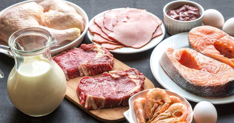 Белковая диета Дюкана: как похудеть, не отказывая себе в еде